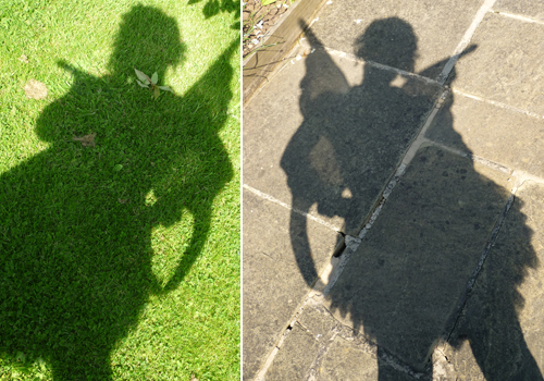 blog fairy shadow