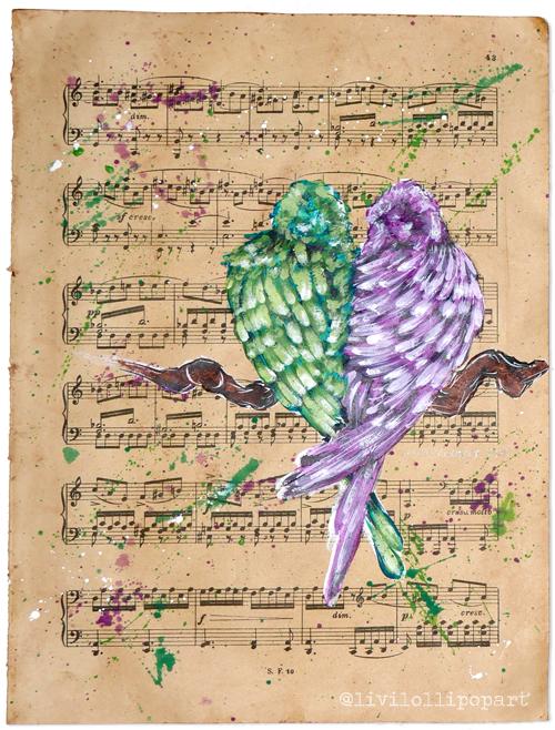 twitter solo birds